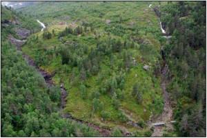 Visualisering av bekkeinntaka nedanfor Sperlestølen. Vassdøla til venstre og Liadøla til høgre. Planlagd minstevannføring er ikkje vist. (Kjelde: Statkraft, konsesjonssøknaden, s. 121)